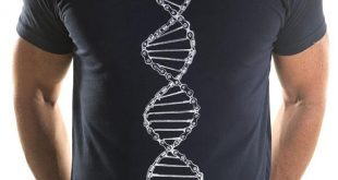 cycling t shirts dna t-shirt duvuyab