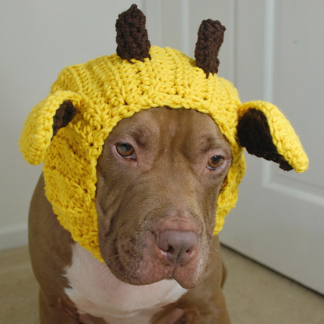 dog hats giraffe hat by courtanai vfsggxo
