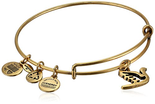 bangle charm bracelet alex and ani bangle bar  HSOGMCM