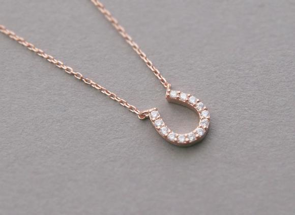 horseshoe necklace image 1 fstctcv
