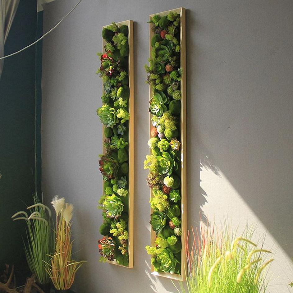 Charming vertical succulent garden wall ideas for growing succulents 2