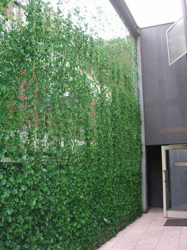 Vibrant green plant wall design why industrial companies use this type of wall 5