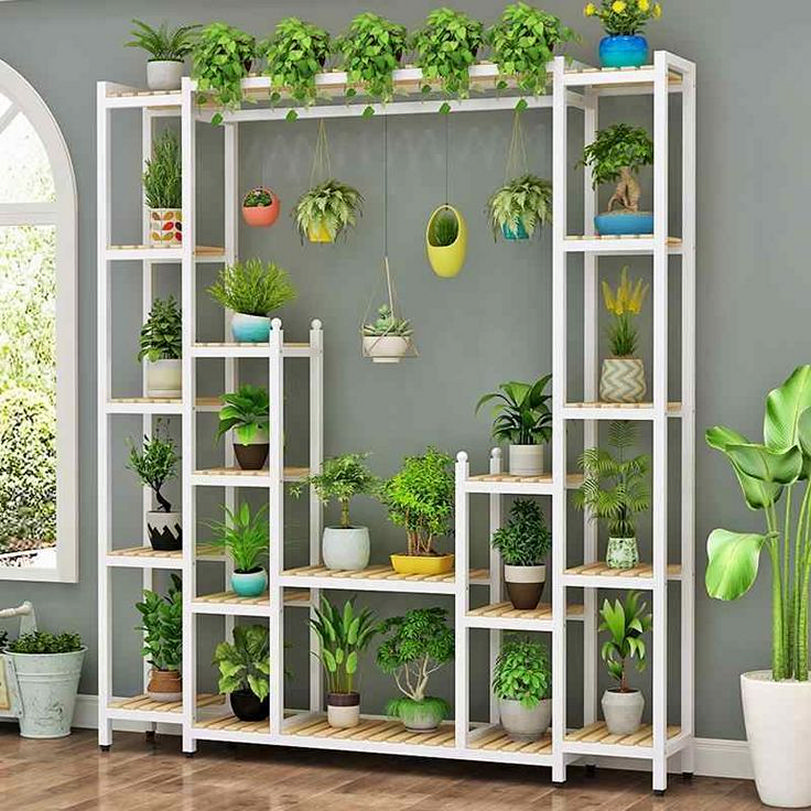 Enjoy the beautiful plant stand with a wonderful green view 1