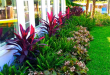 25+ Best Tropical Garden Design Ideas - Home and Garde