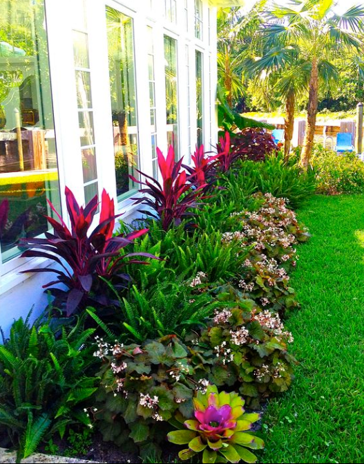 Best Tropical Landscaping Ideas