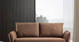Amazon.com: Modern Designed Decor loveseats Sofa with Sofa Bed for .