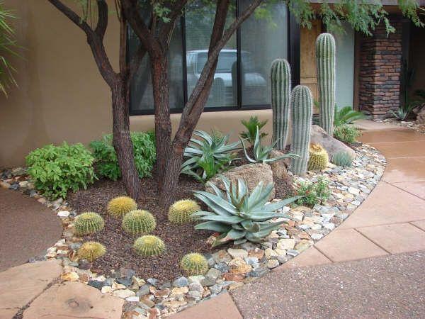 Lululandscaping.com   Desert landscape front yard, Arizona .