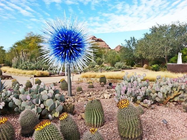 Arizona Front Yard Garden Ideas   Evergreen Tu