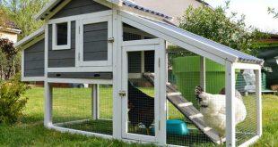 DIY Chicken Coops - 20 Inspiring Designs - Bob Vi
