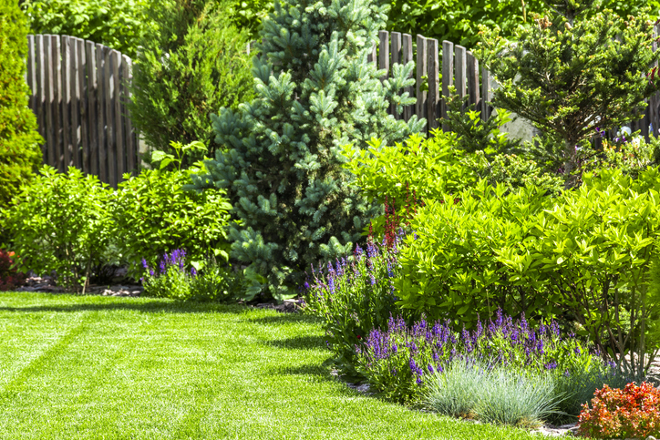 4 simple design ideas that will transform your garden - WCH Hom