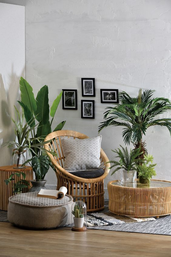 60+ Plant Stand Design Ideas for Indoor Houseplants - Page 39 of .