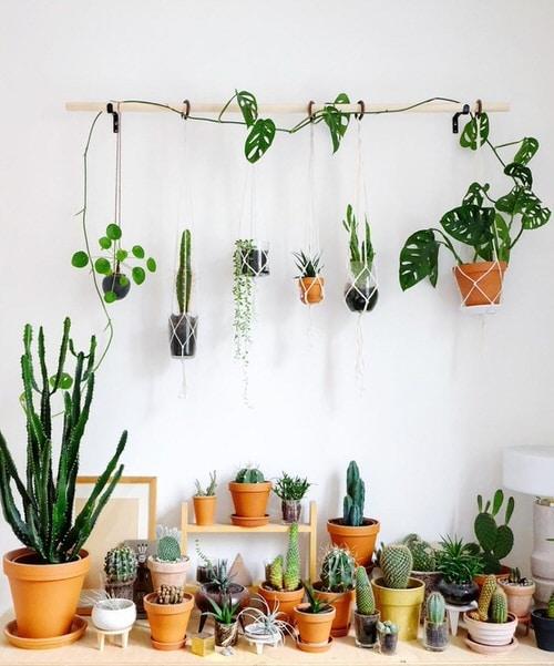 32 Wall Hanging Plant Decor Ideas | Balcony Garden W