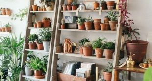 60+ Plant Stand Design Ideas for Indoor Houseplants - Page 18 of .