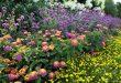 Top Garden Trends for 2021 | Garden Desi