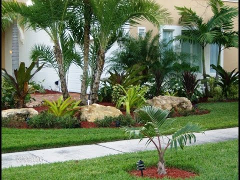 Best Ideas for Tropical Landscaping - YouTu