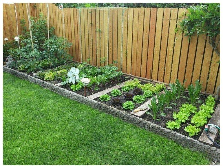 Vegetable Garden Backyard Design Ideas