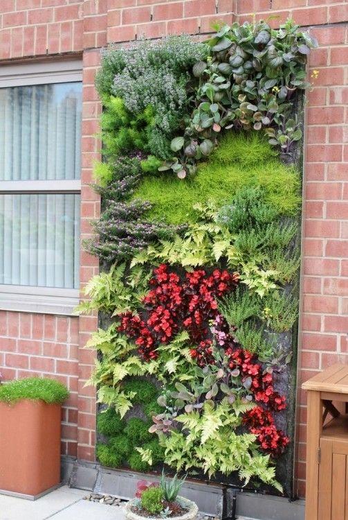 living wall outdoor living wall installation living wall plants .