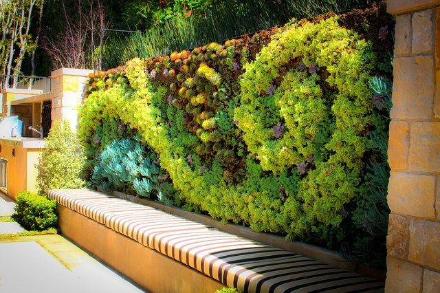 20 Of The Most Beautiful Outdoor Living Wall Ideas | Vertical .